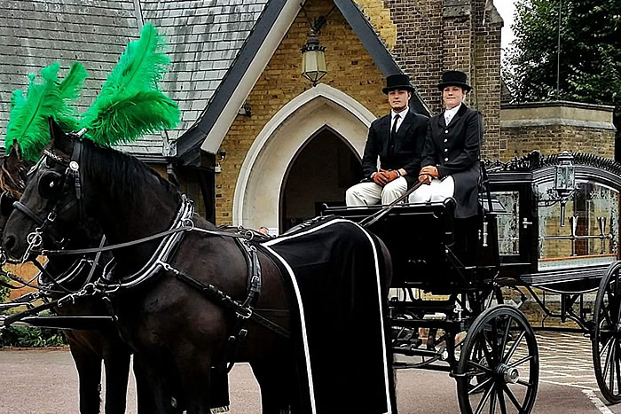 Carriage Horses 4