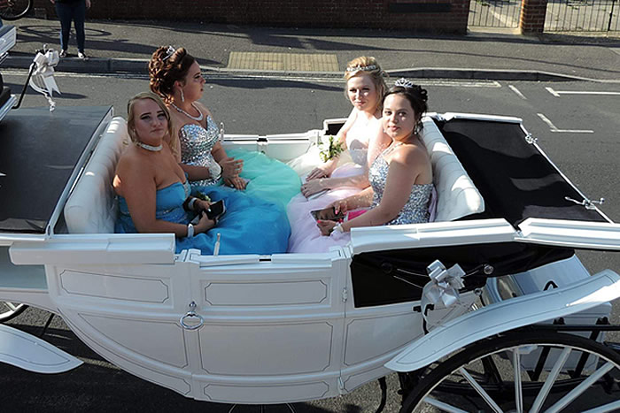 Prom Carriage Horses 2