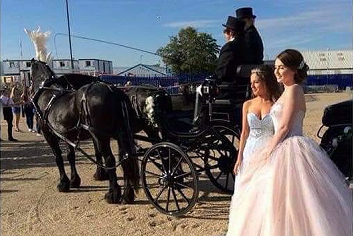 Prom Carriage Horses 3