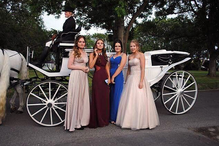 Prom Carriage Horses 4